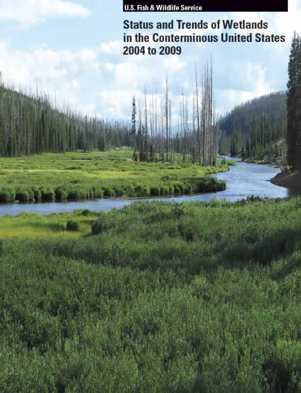 ST2009cover