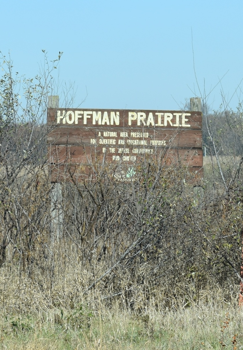 hoffman_sign